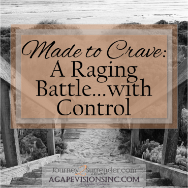Made to Crave: A Raging Battle…with Control