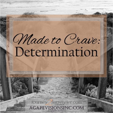 Made to Crave: Determination