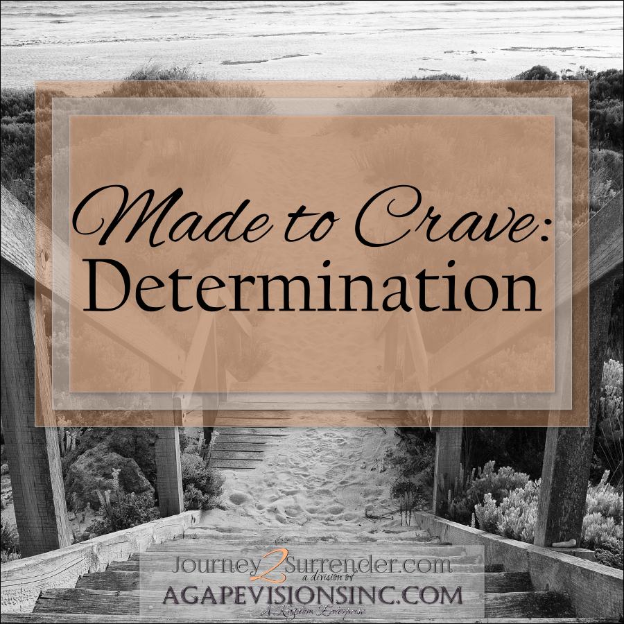 2014_01_27 M2C_Determination