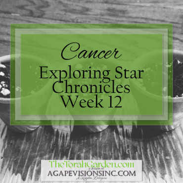 Cancer: Exploring Star Chronicles – Week 12
