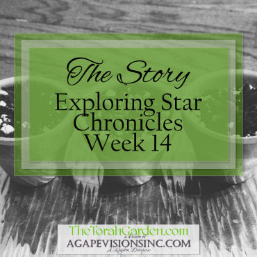 The Story: Exploring Star Chronicles – Week 14