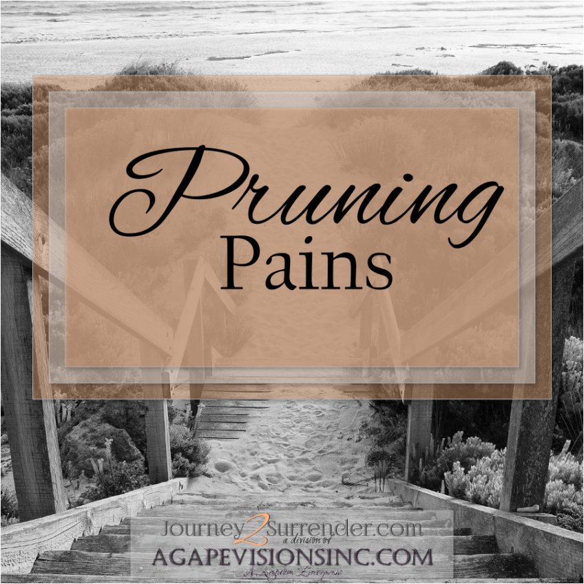 Pruning Pains